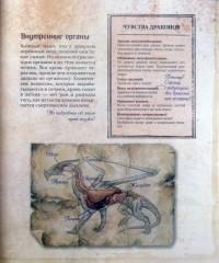 Драконы. Полная энциклопедия