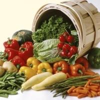 Загадки об овощах