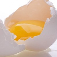 Яичная краска